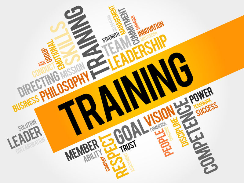 What does a training manager do?