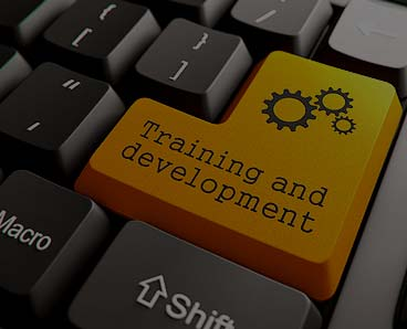 HR and Training